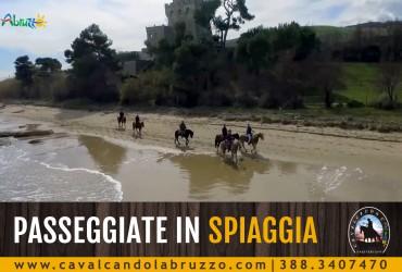 Tornano le passeggiate a cavallo in spiaggia, prenota la tua avventura!