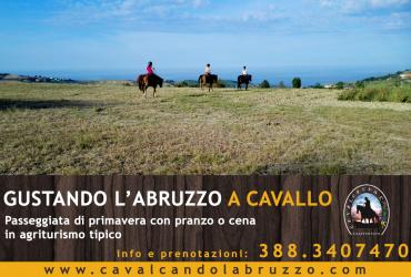 """""""Gustando l'Abruzzo a cavallo"""", ecco le nuove passeggiate con pranzo in agriturismo"""