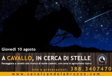 Notte di San Lorenzo: il 10 agosto a cavallo, in cerca di stelle