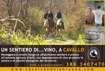"""""""Sentiero di… vino"""", ecco la nuova passeggiata a cavallo in Abruzzo"""